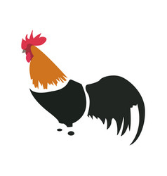isolated abstract chicken vector image