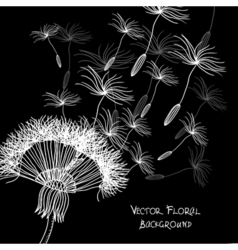 Overblown dandelion background vector