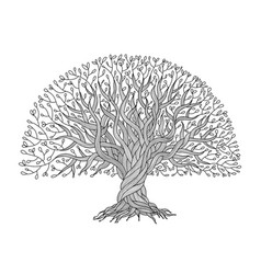 big tree with roots for your design vector image vector image