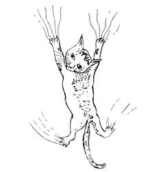 Kitten Scratching Sketch vector image vector image