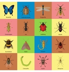 Set of insects flat style design icons Butterfly vector image