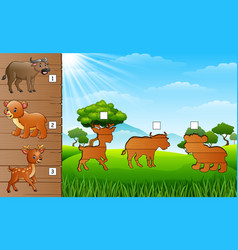 animals collection with buffalo bear and little d vector image