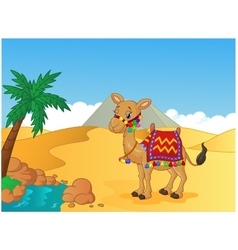 Cartoon decorated camel vector
