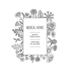 herbs frame herbal background design for spa vector image