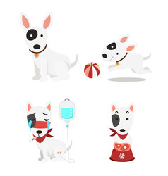 isolated cute dogs set on white background vector image