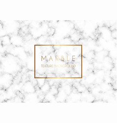 Detailed marble texture vector