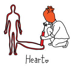 metaphor main function of human heart vector image