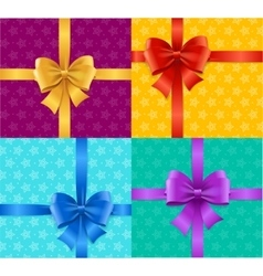 Present Card Background or Packaging Set vector image