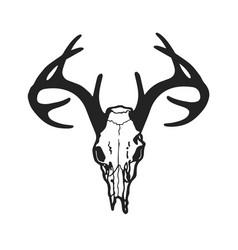 Skull deer vector