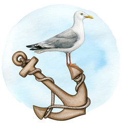 watercolor seagull resting on a vintage anchor vector image