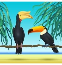 Toco toucan and rhinoceroc bill realistic birds vector image vector image