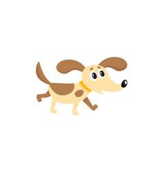 flat dog isolated vector image