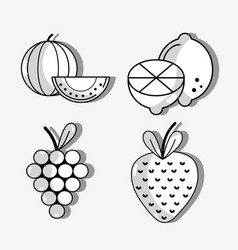 set fresh organic protein nutrition vector image