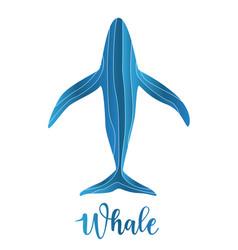 abstract whale logo deign vector image