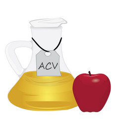 apple cider vinegar acv and one apple vector image