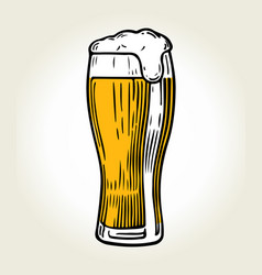 Beer glass color vector