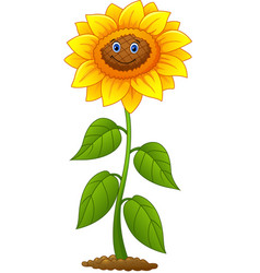 cartoon smiling sunflower vector image