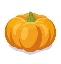 Orange pumpkin autumn vector