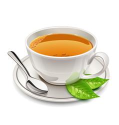 cup of tea vector image