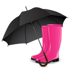 rainboots and an umbrella vector image vector image