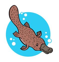Cartoon platypus vector