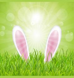 Easter bunny ears nestled in grass vector
