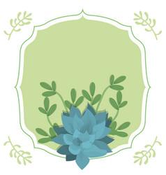 emblem frame with desert plants vector image
