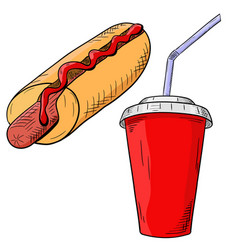fast food - hot dog with drink in disposable cup vector image