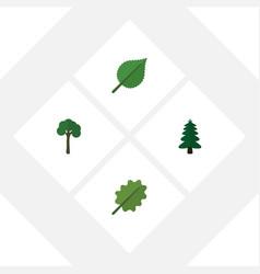 Flat icon ecology set alder evergreen linden vector