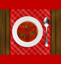 white porcelain plate with red soup and parsley vector image