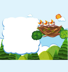 bird and chicks banner template vector image