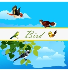 Card with birds flying together and alone bird vector