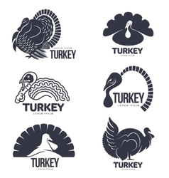 Set of turkey stylized graphic logo templates vector image