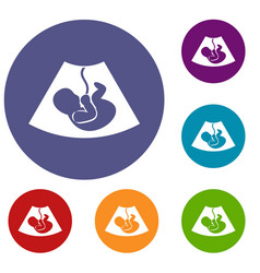 Ultrasound fetus icons set vector