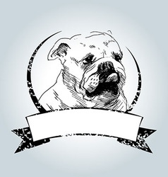 Vintage label with bulldog head vector