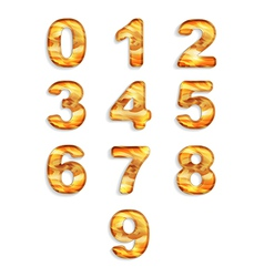 Numbers icon set with wood texture isolated vector image vector image