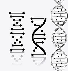 DNA design vector