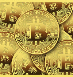 many bitcoins on white background vector image