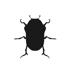 Protaetia May Bug Insect Design Flat vector image