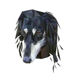Saluki polygonal portrait vector