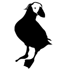 Silhouette of puffin vector