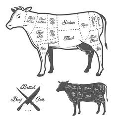 British butcher cuts of beef diagram vector image