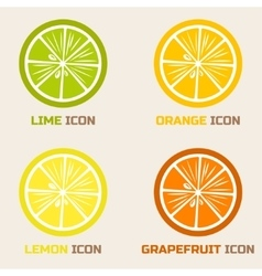 Citrus Icons in flat style vector image