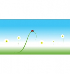 ladybug spring background vector image vector image