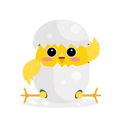 cute newborn yellow chicken character funny vector image