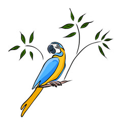 hand drawn yellow parrot vector image