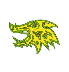 boar head celtic knot vector image