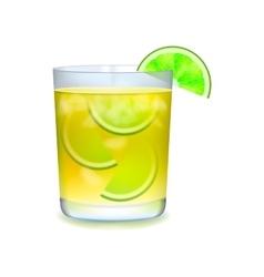 Citrus realistic cocktail vector