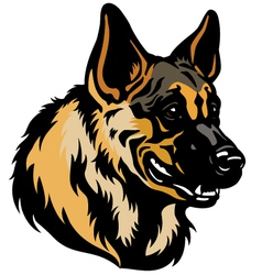 German shepherd head vector