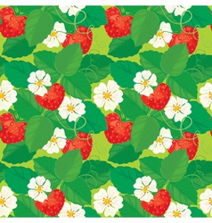 strawberry seamless 2 380 vector image